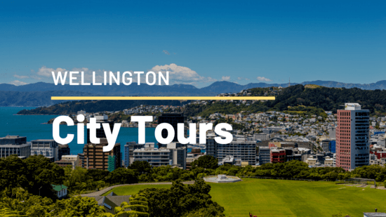 Iconic Mustang Convertible Wellington City Tour for 2
