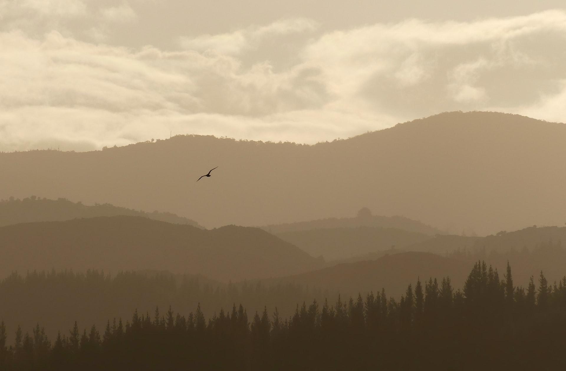 Best time to visit Abel Tasman National Park