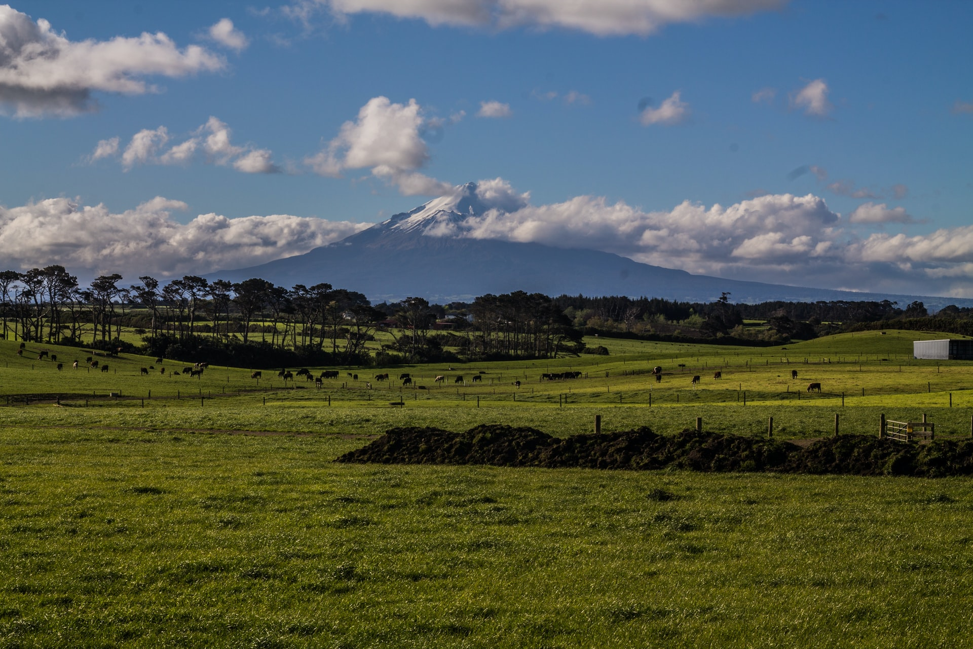 Must things to do in Egmont National Park