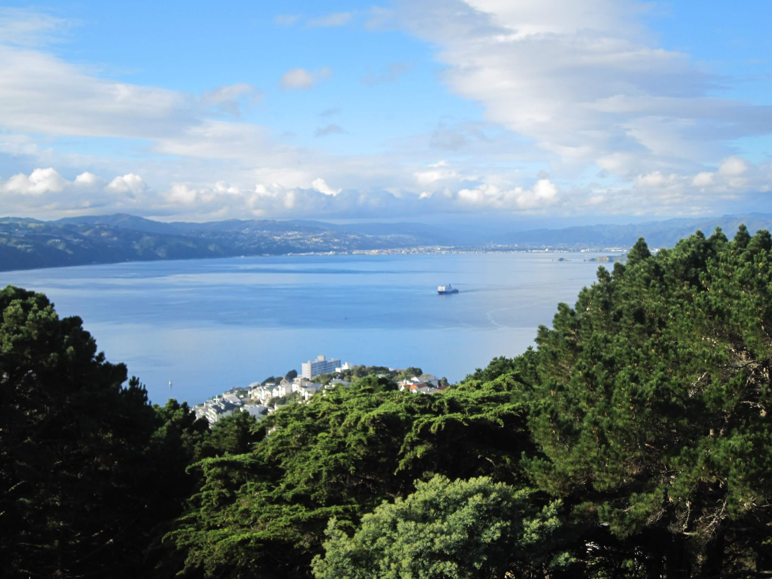 Wellington City Full Day Tour for 2 in Iconic Mustang Convertible