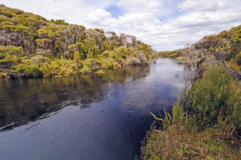 Activities in Rakiura National Park