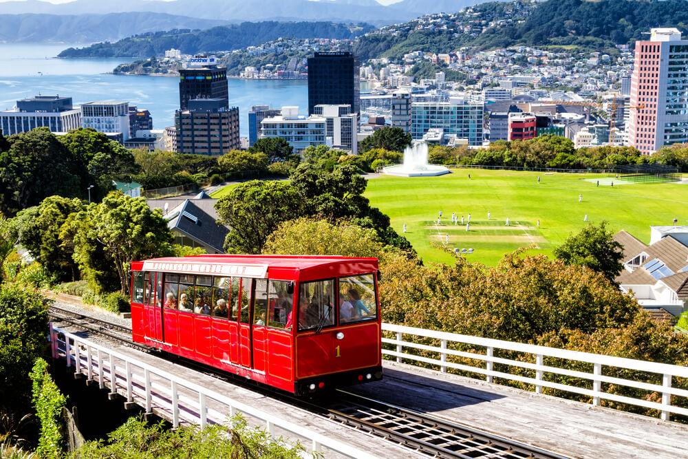 Wellington City Full Day Tour